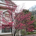 八仙山森林遊樂區4.JPG