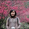 八仙山森林遊樂區2.JPG