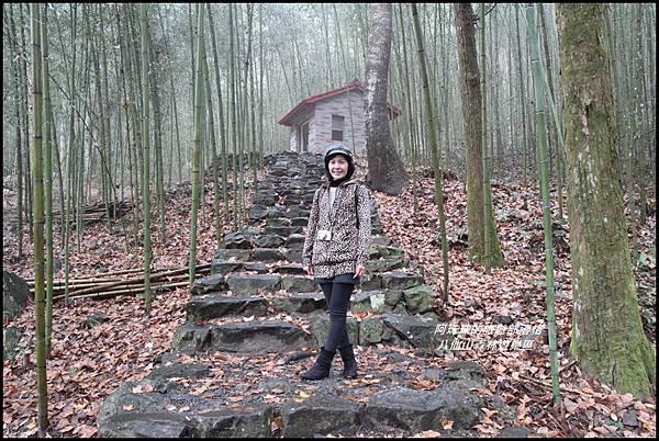 八仙山森林遊樂區11.JPG