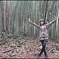 八仙山森林遊樂區10.JPG