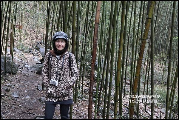 八仙山森林遊樂區13.JPG