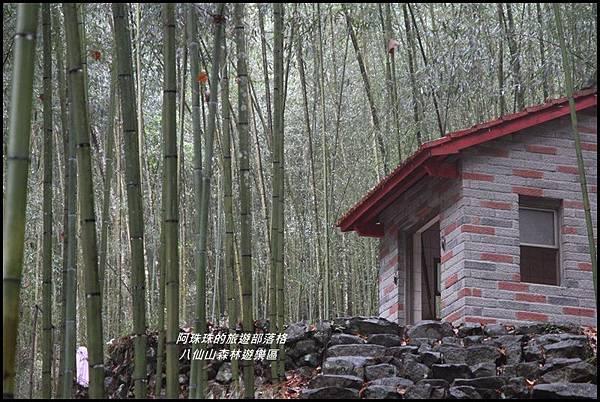 八仙山森林遊樂區12.JPG