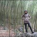 八仙山森林遊樂區14.JPG