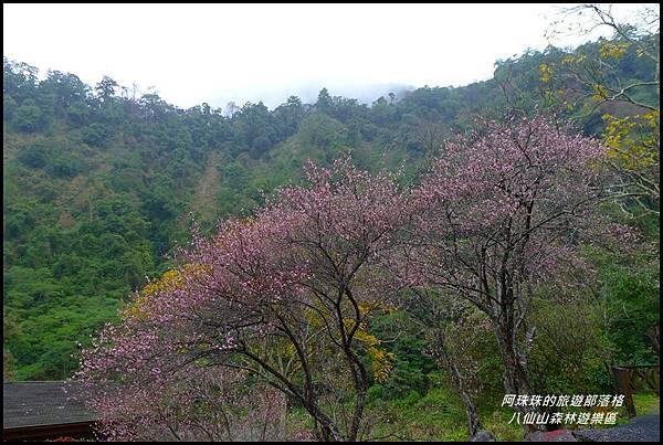 八仙山森林遊樂區26.JPG