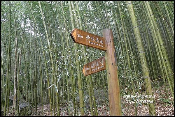 八仙山森林遊樂區31.JPG