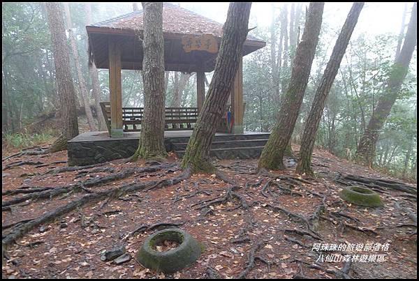八仙山森林遊樂區30.JPG