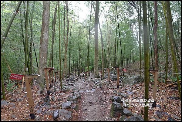 八仙山森林遊樂區32.JPG