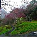 八仙山森林遊樂區36.JPG