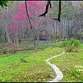 八仙山森林遊樂區35.JPG