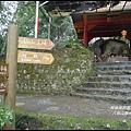 八仙山森林遊樂區39.JPG