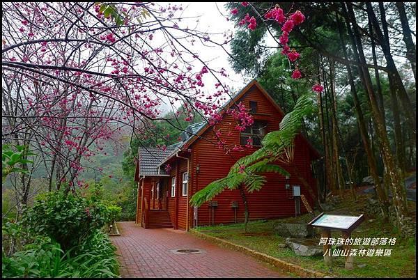 八仙山森林遊樂區42.JPG