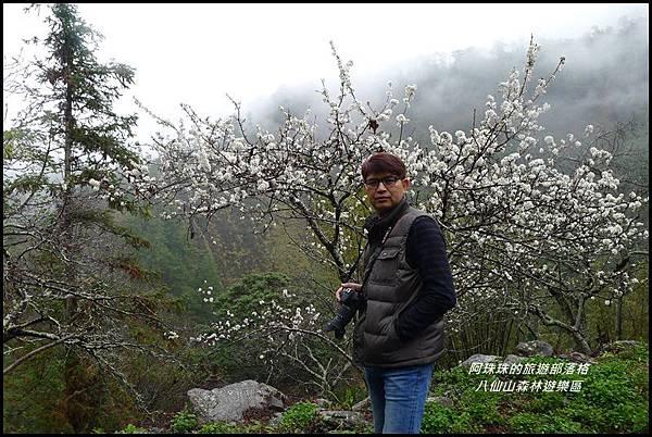 八仙山森林遊樂區47.JPG