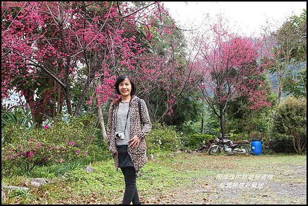 松鶴神農谷營地16.JPG