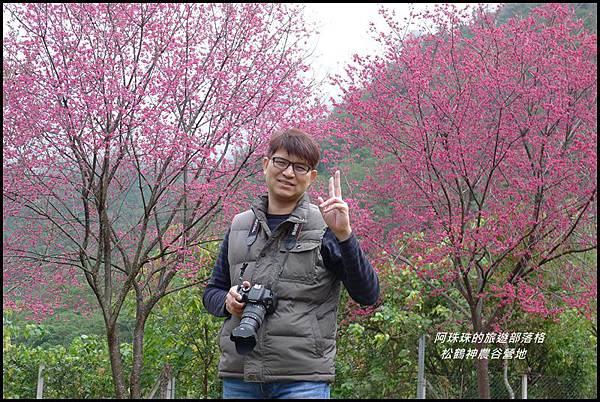 松鶴神農谷營地21.JPG