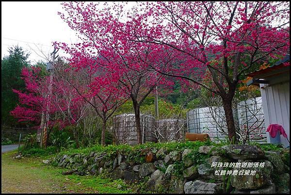 松鶴神農谷營地25.JPG