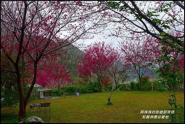 松鶴神農谷營地24.JPG