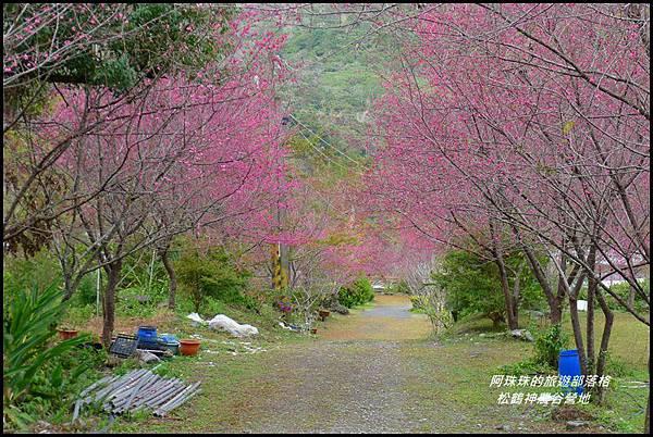 松鶴神農谷營地26.JPG