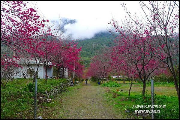 松鶴神農谷營地28.JPG