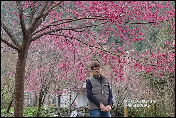 松鶴神農谷營地36.JPG