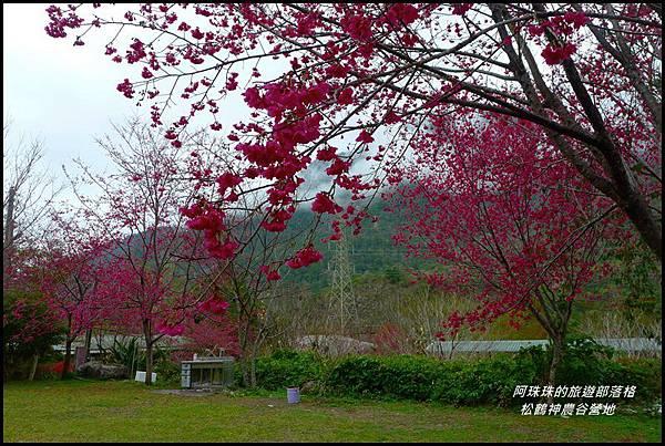 松鶴神農谷營地35.JPG