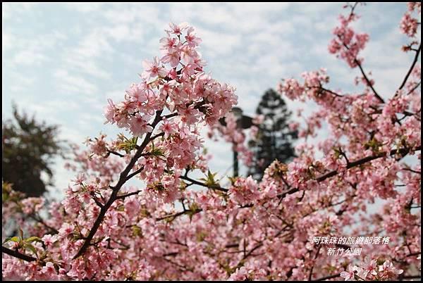新竹公園9.JPG