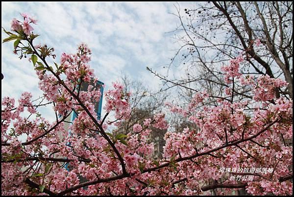 新竹公園10.JPG