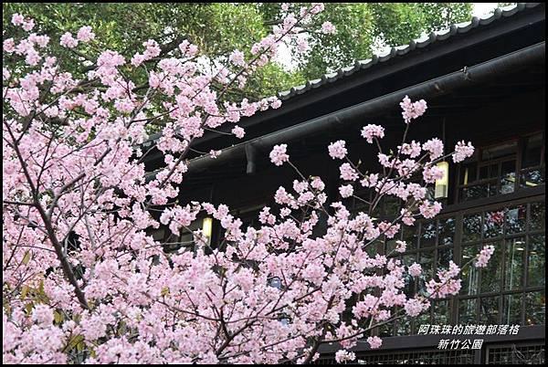 新竹公園16.JPG