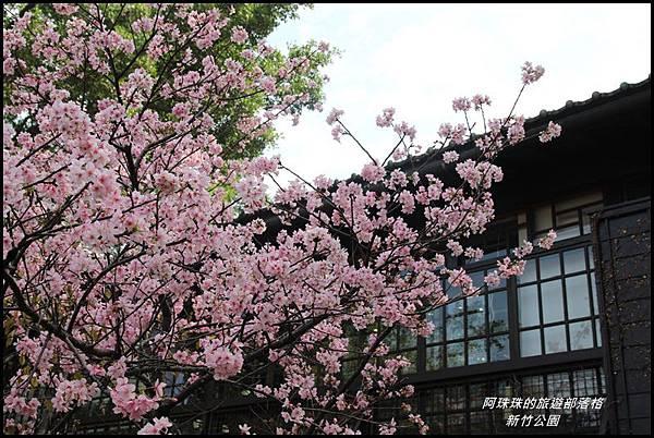 新竹公園17.JPG