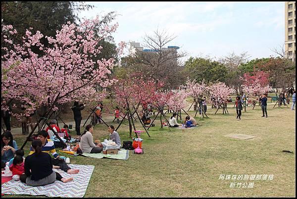 新竹公園34.JPG