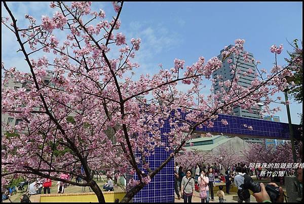 新竹公園40.JPG