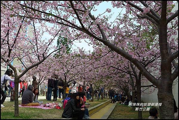 新竹公園43.JPG