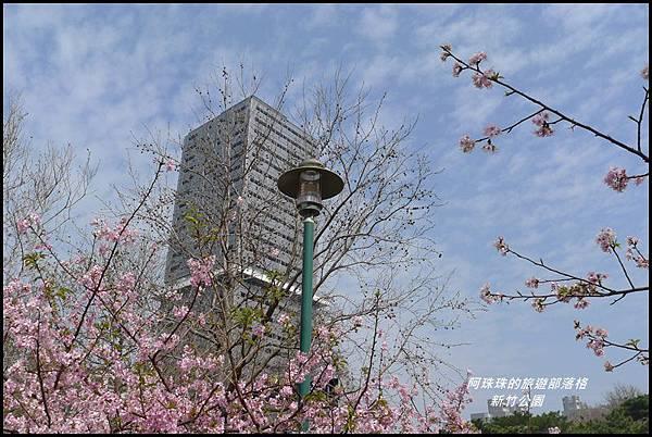 新竹公園46.JPG