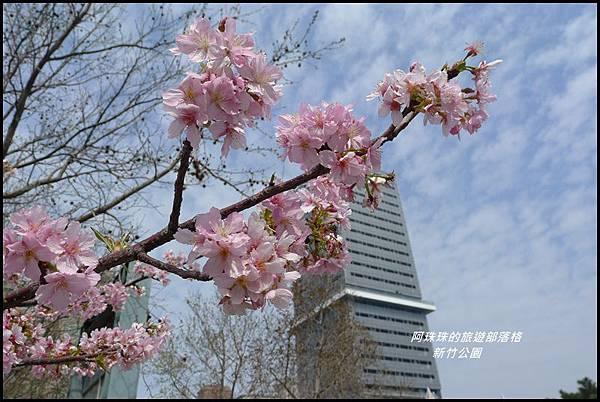 新竹公園47.JPG