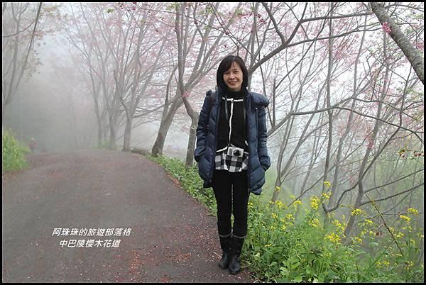 中巴陵櫻木花道4.JPG