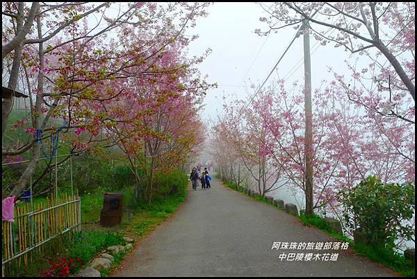中巴陵櫻木花道32.JPG