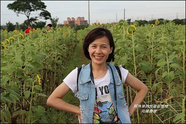 向陽農場19.JPG