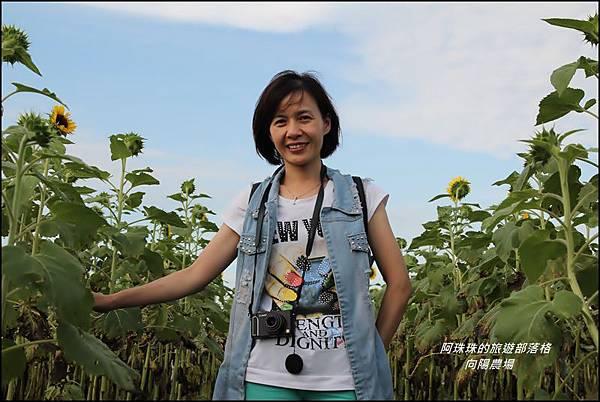 向陽農場20.JPG