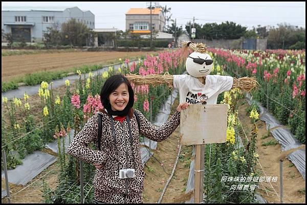 向陽農場38.JPG