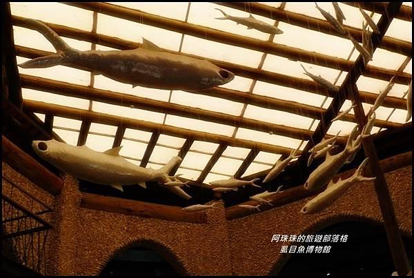 虱目魚博物館4.JPG