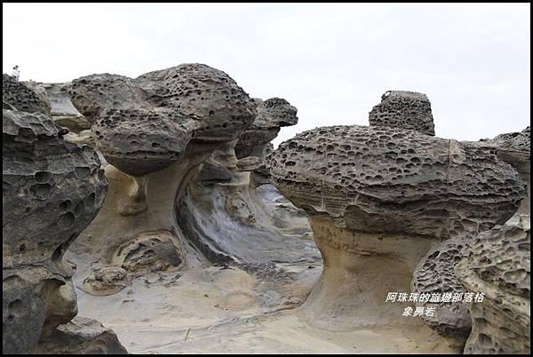 象鼻岩11.JPG