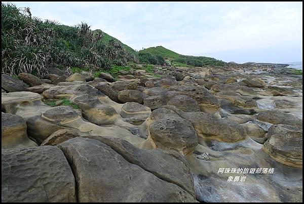象鼻岩20.JPG