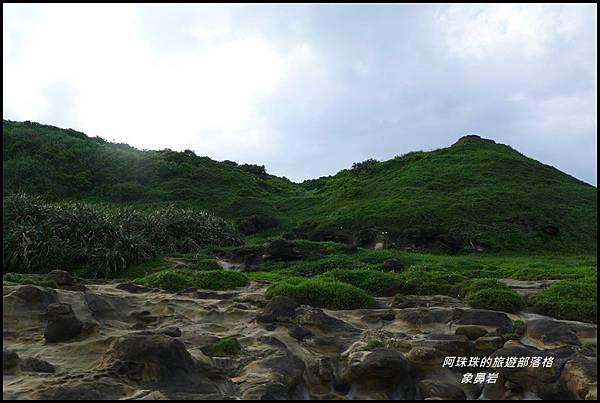象鼻岩24.JPG