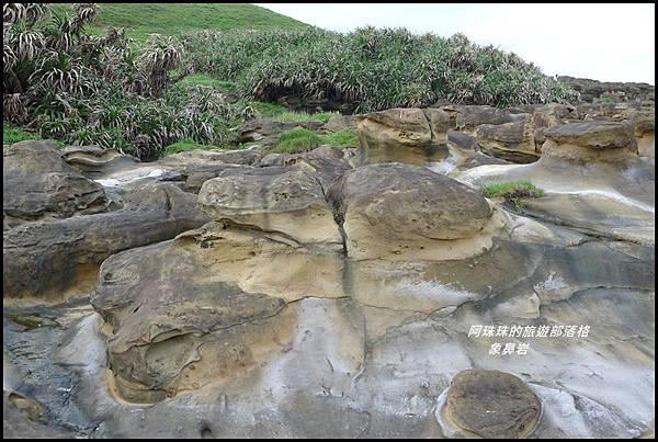 象鼻岩27.JPG