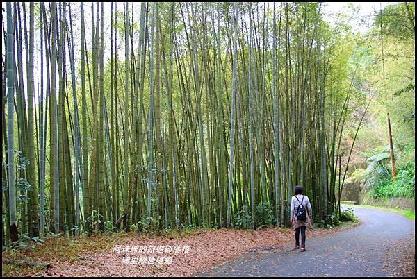 瑞里綠色隧道2.JPG