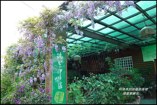 瑞里紫藤花9.JPG