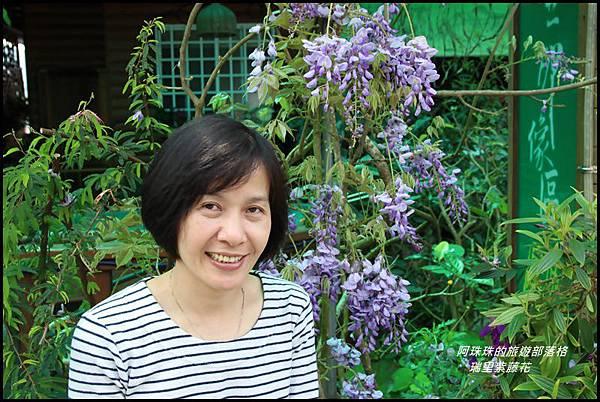 瑞里紫藤花12.JPG