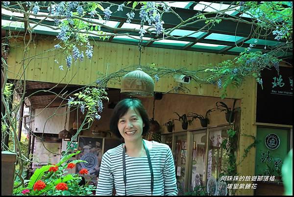 瑞里紫藤花20.JPG