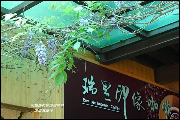 瑞里紫藤花30.JPG