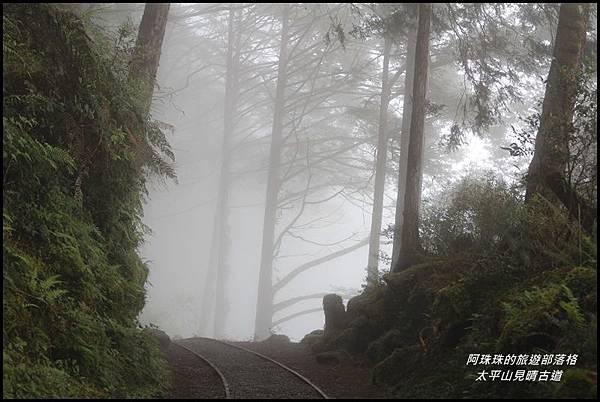 太平山見晴古道11.JPG