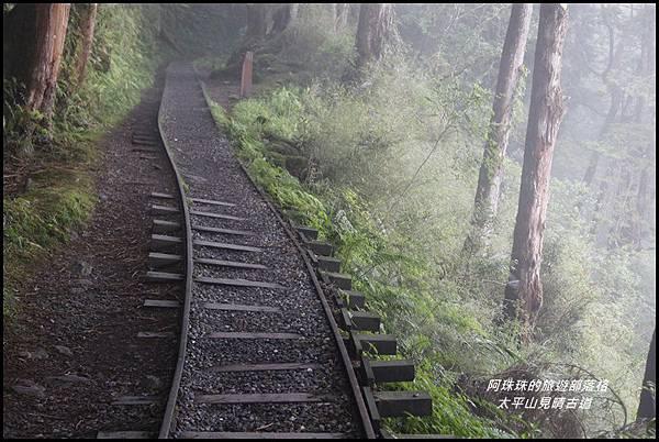 太平山見晴古道15.JPG